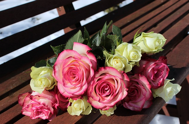 kytice růží na lavici